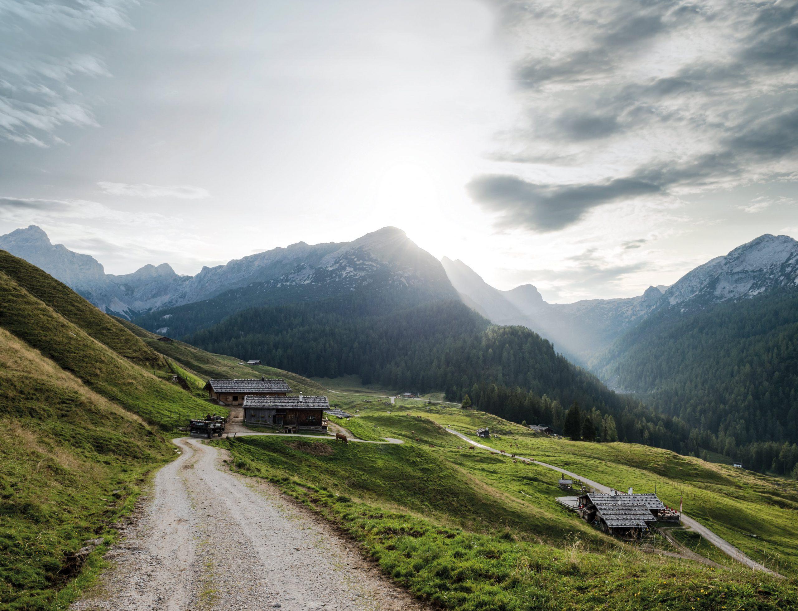 Molkerei Berchtesgadener Land Impression