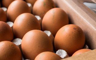 Lunemann´s® leckerer Lieferservice - Hühnereier