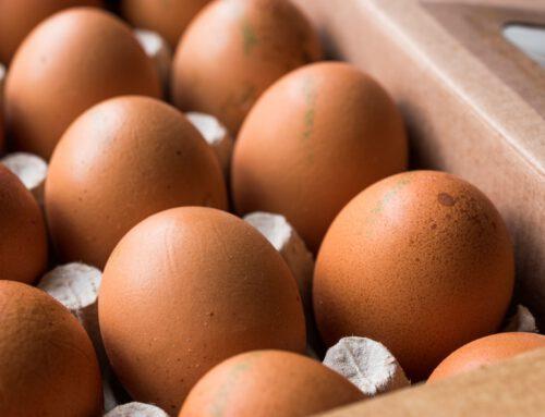 Was bedeutet der Code auf dem Ei?