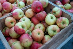 Lunemann´s® leckerer Lieferservice - Äpfel online bestellen