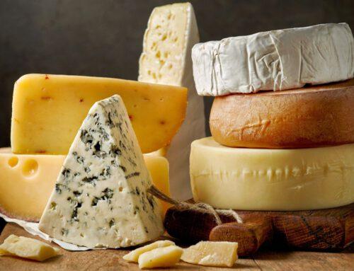 Die Welt der Käse